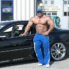 thumbs bodybuilder 002 Des Bodybuilders ! (91 photos)