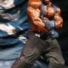 thumbs bodybuilder 022 Des Bodybuilders ! (91 photos)
