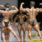 thumbs bodybuilder 024 Des Bodybuilders ! (91 photos)