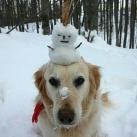 thumbs des bonhomme de neige 000 Des bonhommes de neige =D (33 photos)