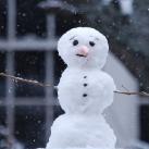 thumbs des bonhomme de neige 007 Des bonhommes de neige =D (33 photos)