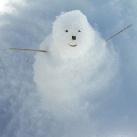 thumbs des bonhomme de neige 009 Des bonhommes de neige =D (33 photos)
