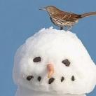 thumbs des bonhomme de neige 025 Des bonhommes de neige =D (33 photos)