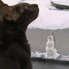 thumbs des bonhomme de neige 028 Des bonhommes de neige =D (33 photos)