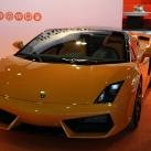 thumbs dubai motor show 2009 025 Dubai Motor Show 2009 (31 photos)