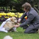 thumbs il se marie avec un chien 001 Il se marie avec un Chien ! (17 photos)