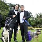 thumbs il se marie avec un chien 004 Il se marie avec un Chien ! (17 photos)