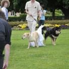 thumbs il se marie avec un chien 008 Il se marie avec un Chien ! (17 photos)