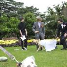 thumbs il se marie avec un chien 010 Il se marie avec un Chien ! (17 photos)