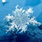 thumbs la beaute des flocons de neige 000 La beauté des flocons de neige (49 photos)