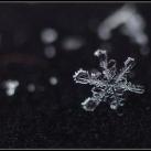 thumbs la beaute des flocons de neige 002 La beauté des flocons de neige (49 photos)