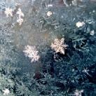 thumbs la beaute des flocons de neige 011 La beauté des flocons de neige (49 photos)