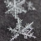 thumbs la beaute des flocons de neige 015 La beauté des flocons de neige (49 photos)