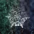 thumbs la beaute des flocons de neige 020 La beauté des flocons de neige (49 photos)