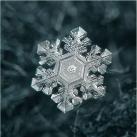 thumbs la beaute des flocons de neige 024 La beauté des flocons de neige (49 photos)