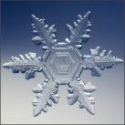 thumbs la beaute des flocons de neige 025 La beauté des flocons de neige (49 photos)