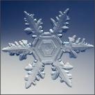 thumbs la beaute des flocons de neige 027 La beauté des flocons de neige (49 photos)