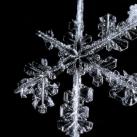 thumbs la beaute des flocons de neige 035 La beauté des flocons de neige (49 photos)