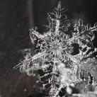 thumbs la beaute des flocons de neige 042 La beauté des flocons de neige (49 photos)