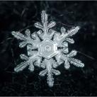 thumbs la beaute des flocons de neige 044 La beauté des flocons de neige (49 photos)