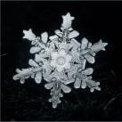 thumbs la beaute des flocons de neige 045 La beauté des flocons de neige (49 photos)