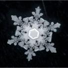 thumbs la beaute des flocons de neige 046 La beauté des flocons de neige (49 photos)