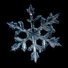thumbs la beaute des flocons de neige 048 La beauté des flocons de neige (49 photos)