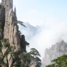 thumbs la montagne avatar 014 La montagne Avatar (14 photos)