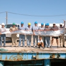 thumbs le oarfish un tres long poisson 021 Le Oarfish   Un Très long poisson ! (24 photos)