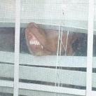 thumbs les animaux leches vitres 009 Les animaux Lèches vitres x) ! (50 photos)