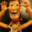 thumbs les nouvelles aventures de woody 021 Les Nouvelles Aventures de Woody (46 photos)