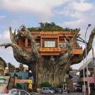 thumbs les restaurants les plus insolites dans le monde 003 Les restaurants les plus insolites dans le monde (45 photos)