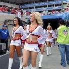 thumbs pom pom girls de la nfl 2010 031 Les pom pom girls de la NFL 2010 (32 photos)