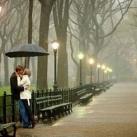 thumbs proposition romantique sous la pluie 000 Proposition romantique sous la pluie (9 photos)