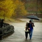 thumbs proposition romantique sous la pluie 002 Proposition romantique sous la pluie (9 photos)