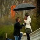 thumbs proposition romantique sous la pluie 004 Proposition romantique sous la pluie (9 photos)