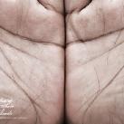 thumbs pub wwf 032 Publicité WWF (41 photos)