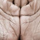 thumbs pub wwf 040 Publicité WWF (41 photos)