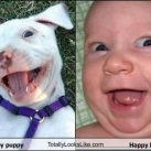 thumbs ressemblance013 Ressemblance Frappante xD ! (98 photos)